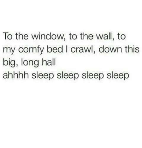 Humans of Tumblr, Sleep, and Crawl: To the window, to the wall, to  my comfy bed I crawl, down this  big, long hall  ahhhh sleep sleep sleep sleep