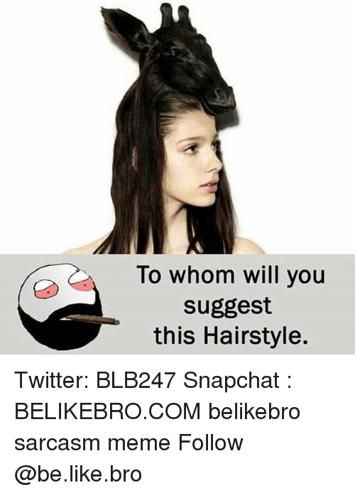 To Whom: To whom will you  suggest  this Hairstyle. Twitter: BLB247 Snapchat : BELIKEBRO.COM belikebro sarcasm meme Follow @be.like.bro