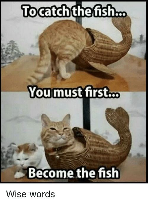 Fish, First, and Words: Tocatchthefish...  Youmust first...  Become the fish Wise words