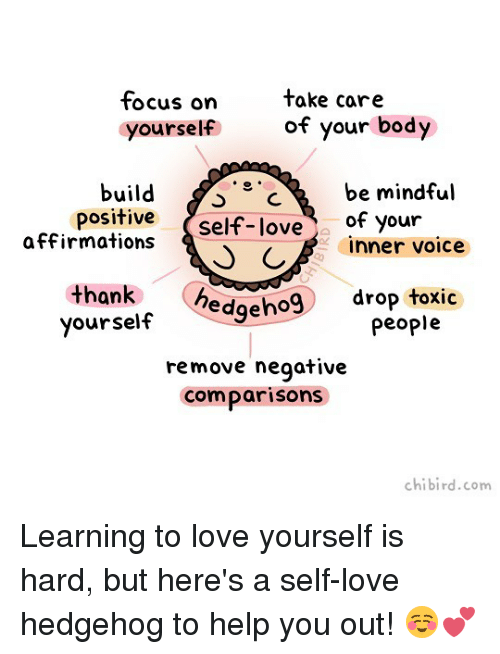 Affirmations: tocus on  yourself  take care  of your body  build C  be mindful  c  positive self-love of your  affirmations  C  inner voice  yourself edgeho9 drop toxic  remove negative  comparisons  thank  people  chibird.com Learning to love yourself is hard, but here's a self-love hedgehog to help you out! ☺️💕