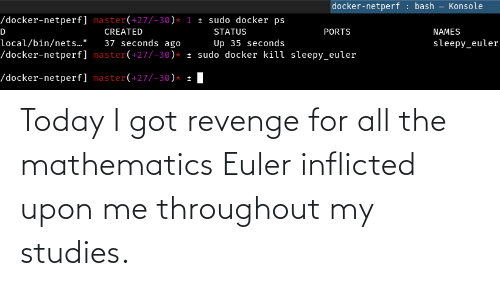 Mathematics: Today I got revenge for all the mathematics Euler inflicted upon me throughout my studies.