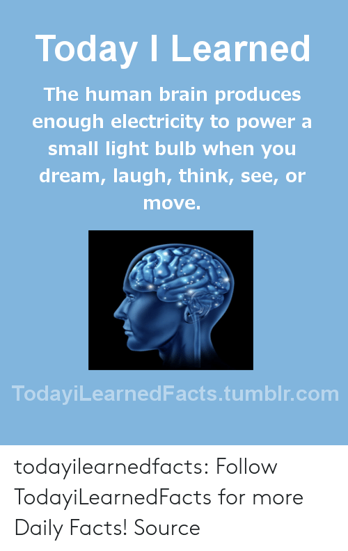 Produces: Today I Learned  The human brain produces  enough electricity to power a  small light bulb when you  dream, laugh, think, see, or  move  TodaviLearned Facts.tumblr.com todayilearnedfacts: Follow TodayiLearnedFacts for more Daily Facts! Source