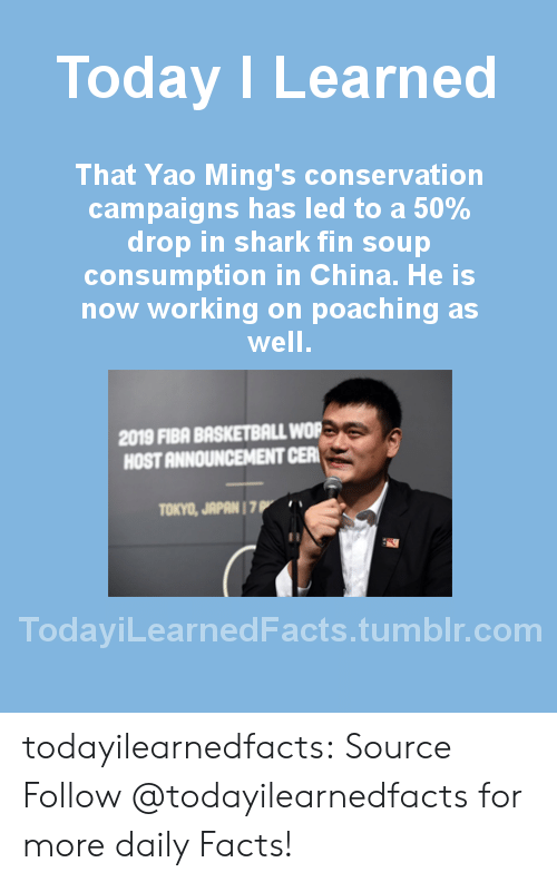 Upworthy: Today ILearned  That Yao Ming's conservation  campaigns has led to a 50%  drop in shark fin soup  consumption in China. He is  now working on poaching as  well  2019 FIBA BASKETBALL WOR  HOST ANNOUNCEMENT CER  TOKYO, JAPAN 1 7  TodayiLearnedFacts.tumblr.com todayilearnedfacts: Source Follow @todayilearnedfactsfor more daily Facts!