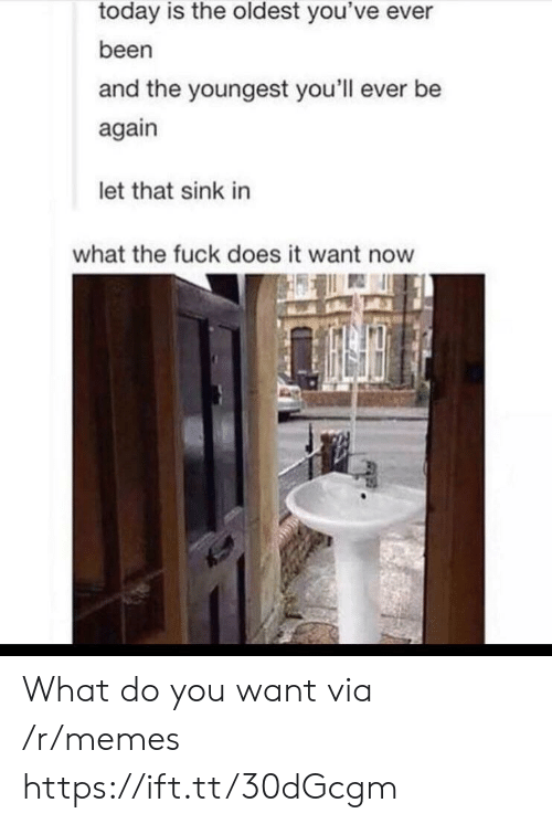 Memes, Fuck, and Today: today is the oldest you've ever  been  and the youngest you'll ever be  again  let that sink in  what the fuck does it want now What do you want via /r/memes https://ift.tt/30dGcgm