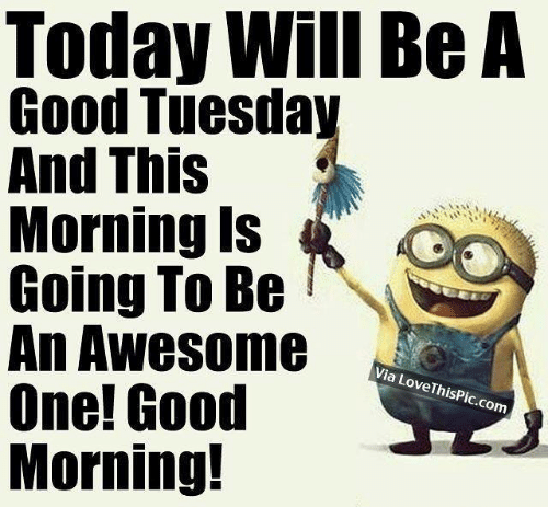 Memes, Good Morning, and Good: Today Will Be A  Good Tuesday  And This  Morning Is  Going To Be'  An Awesome  One! Good  Morning!  Via LoveThisPic.com