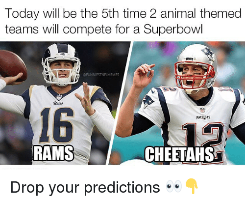 cheetahs: Today will be the 5th time 2 animal themed  teams will compete for a Superbowl  FUNNIESTNFLMEMES  Rams  16  PATRIOTS  RAMS  CHEETAHS Drop your predictions 👀👇