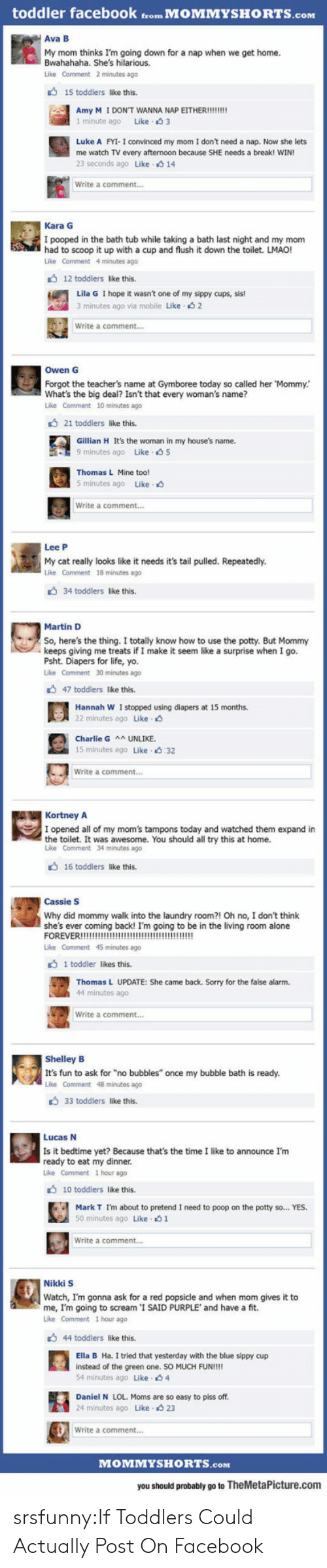 """popsicle: toddler facebook from MOMMYSHORTS.com  Ava B  My mom thinks I'm going down for a nap when we get home.  Bwahahaha. She's hilarious.  Like Comment 2 minutes ago  15 toddlers like this.  1 minute ago Like 3  Luke A FYI- I convinced my mom I don't need a nap. Now she lets  me watch TV every afternoon because SHE needs a break! WIN  23 seconds ago Like 14  Write a comment...  Kara G  I pooped in the bath tub while taking a bath last night and my mom  had to scoop it up with a cup and flush it down the toilet. LMAO!  Like Comment 4 minutes ago  12 toddlers like this  Lila G I hope it wasn't one of my sippy cups, sis!  3 minutes ago via mobile Like s 2  Write a comment...  Owen G  Forgot the teacher's name at Gymboree today so called her Mommy.  What's the big deal? Isn't that every woman's name?  Like Comment 10 minutes ago  21 toddlers like this.  Gillian H It's the woman in my house's name.  9 minutes ago Like 5  Thomas L Mine too!  5 minutes ago Like.  Write a comment...  Lee P  My cat really looks like it needs it's tail pulled. Repeatedly.  Like Comment 18 minutes ago  34 toddlers like this.  Martin D  So, here's the thing. I totally know how to use the potty. But Mommy  keeps giving me treats if I make it seem like a surprise when I go.  Psht. Diapers for life, yo.  Like Comment 30 minutes ago  47 toddlers like this.  Hannah W I stopped using diapers at 15 months.  22 minutes ago Like  Charlie G UNLIKE  15 minutes ago Like 32  Write a comment..  KortneyA  I opened all of my mom's tampons today and watched them expand in  the toilet. It was awesome. You should all try this at home.  Like Comment 34 minutes ago  16 toddlers like this.  Cassie S  Why did mommy walk into the laundry room?! Oh no, I don't think  she's ever coming back! I'm going to be in the living room alone  Like Comment 45 minutes ago  1 toddler likes this.  Thomas L UPDATE: She came back. Sorry for the false alarm.  44 minutes ago  Write a comment...  Shelley B  It's fun to ask for """"no bub"""