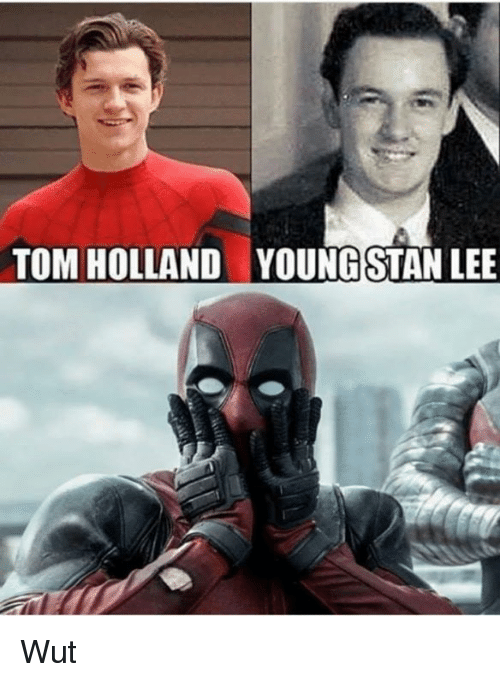 Memes, Stan, and Stan Lee: TOM HOLLAND  YOUNG STAN LEE Wut