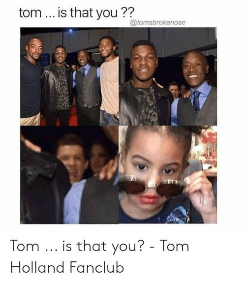 Holland, You, and Tom: tom... is that you??  @tomsbrokenose Tom ... is that you? - Tom Holland Fanclub