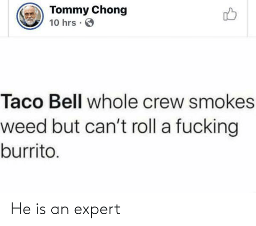chong: Tommy Chong  10 hrs  Taco Bell whole crew smokes  weed but can't roll a fucking  burrito. He is an expert