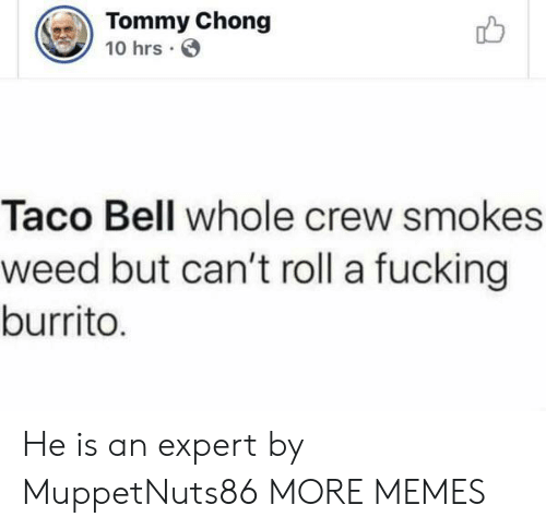 chong: Tommy Chong  10 hrs  Taco Bell whole crew smokes  weed but can't roll a fucking  burrito. He is an expert by MuppetNuts86 MORE MEMES