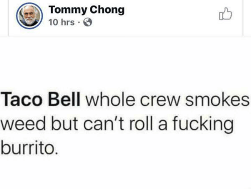 chong: Tommy Chong  10 hrs  Taco Bell whole crew smokes  weed but can't roll a fucking  burrito.