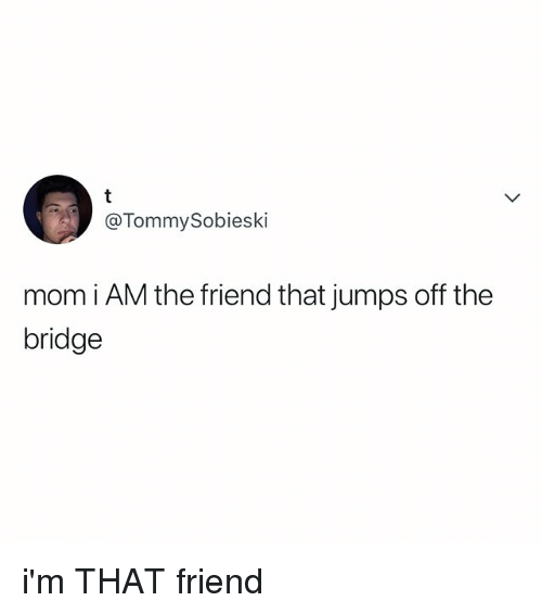 jumps off: @TommySobieski  mom i AM the friend that jumps off the  bridge i'm THAT friend
