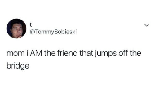 jumps off: @TommySobieski  mom i AM the friend that jumps off the  bridge