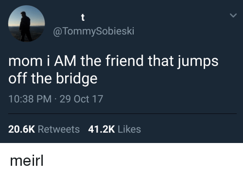 jumps off: @TommySobieski  mom i AM the friend that jumps  off the bridge  10:38 PM 29 Oct 17  20.6K Retweets 41.2K Likes meirl