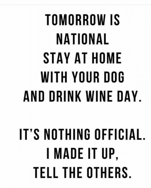 Drink Wine: TOMORROW IS  NATIONAL  STAY AT HOME  WITH YOUR DOG  AND DRINK WINE DAY.  IT'S NOTHING OFFICIAL  I MADE IT UP,  TELL THE OTHERS