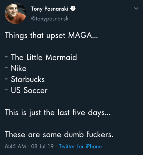 Maga: Tony Posnanski  @tonyposnanski  Things that upset MAGA...  - The Little Mermaid  - Nike  Starbucks  - US Soccer  This is just the last five days...  These are some dumb fuckers.  6:45 AM 08 Jul 19 Twitter for iPhone