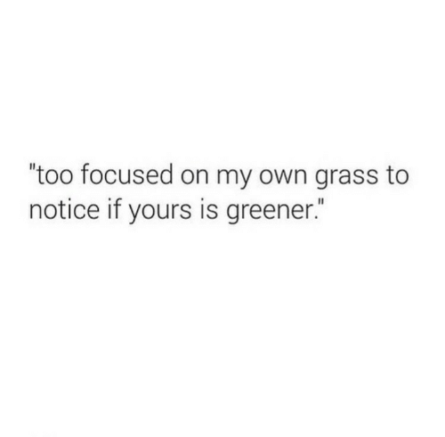 "focused: ""too focused on my own grass to  notice if yours is greener."""