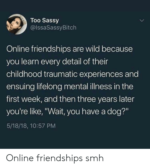 "Smh, Wild, and Sassy: Too Sassy  @lssaSassyBitch  Online friendships are wild because  you learn every detail of their  childhood traumatic experiences and  ensuing lifelong mental illness in the  first week, and then three years later  you're like, ""Wait, you have a dog?""  5/18/18, 10:57 PM Online friendships smh"