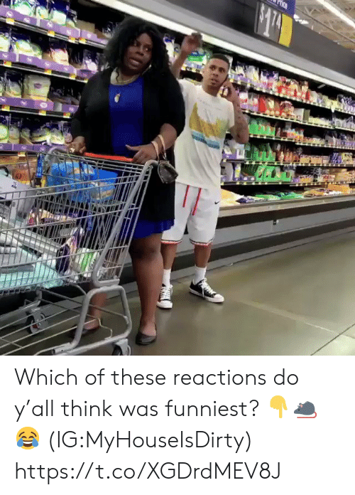Think, Funniest, and Too: tOo Which of these reactions do y'all think was funniest? ??? (IG:MyHouseIsDirty) https://t.co/XGDrdMEV8J
