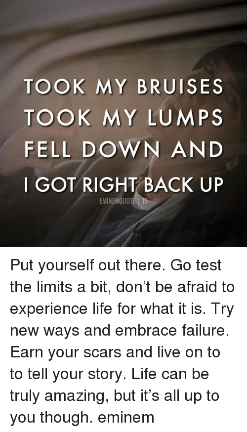 Eminem, Life, and Memes: TOOK MY BRUISES  TOOK MY LUMPS  FELL DOWN AND  I GOT RIGHT BACK UP  EMINEMQUOT Put yourself out there. Go test the limits a bit, don't be afraid to experience life for what it is. Try new ways and embrace failure. Earn your scars and live on to to tell your story. Life can be truly amazing, but it's all up to you though. eminem