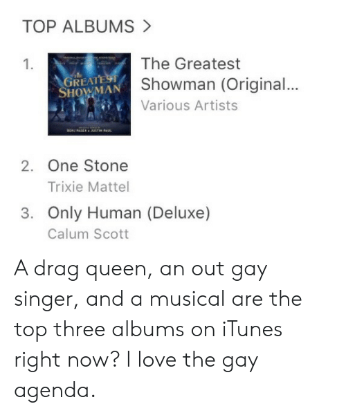 mattel: TOP ALBUMS  The Greatest  Showman (Original...  Various Artists  1.  REAT  SHOWMAN  2. One Stone  Trixie Mattel  3. Only Human (Deluxe)  Calum Scott A drag queen, an out gay singer, and a musical are the top three albums on iTunes right now? I love the gay agenda.