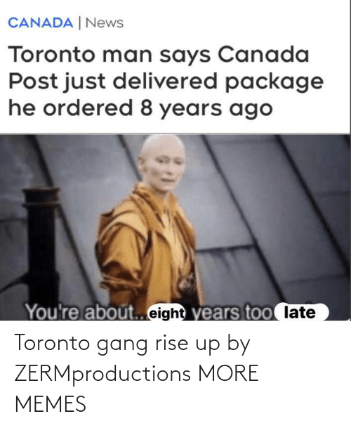 Gang: Toronto gang rise up by ZERMproductions MORE MEMES