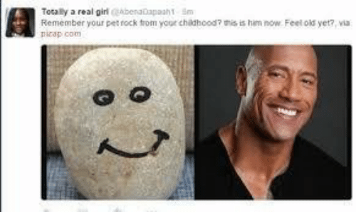 Feel Old Yet: Totaly a real girabenatapaah1 Sm  Remember your pet rock trom your childhood? his is him now Feel old yet?, via  picap com  : 2
