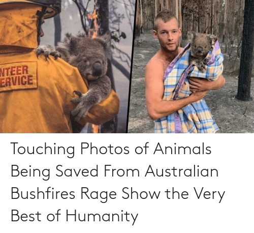 Best Of: Touching Photos of Animals Being Saved From Australian Bushfires Rage Show the Very Best of Humanity