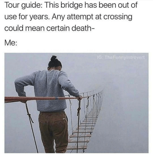 Death, Mean, and Been: Tour guide: This bridge has been out of  use for years. Any attempt at crossing  could mean certain death-  G: T  heFunnyIntrover