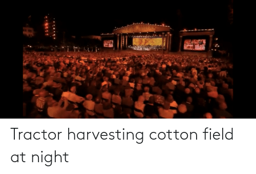 Harvesting: Tractor harvesting cotton field at night