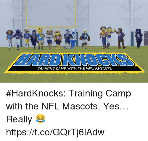 mascots: TRAINING CAMP WITH THE NFL MASCOTS #HardKnocks: Training Camp with the NFL Mascots.  Yes… Really 😂 https://t.co/GQrTj6lAdw