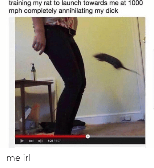 Dick, Irl, and Me IRL: training my rat to launch towards me at 1000  mph completely annihilating my dick  123/407 me irl