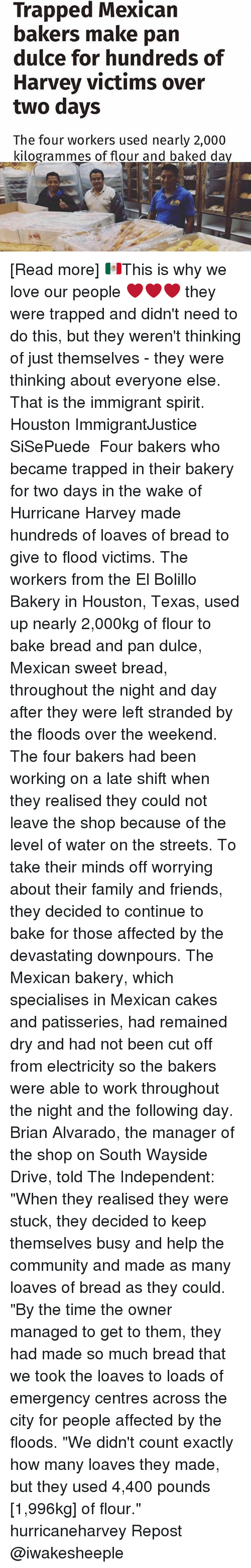 """Baked, Community, and Family: Trapped Mexican  bakers make pan  dulce for hundreds of  Harvey victims over  two days  The four workers used nearly 2,000  kilogrammes of flour and baked da [Read more] 🇲🇽This is why we love our people ❤❤❤ they were trapped and didn't need to do this, but they weren't thinking of just themselves - they were thinking about everyone else. That is the immigrant spirit. Houston ImmigrantJustice SiSePuede ・・・ Four bakers who became trapped in their bakery for two days in the wake of Hurricane Harvey made hundreds of loaves of bread to give to flood victims. The workers from the El Bolillo Bakery in Houston, Texas, used up nearly 2,000kg of flour to bake bread and pan dulce, Mexican sweet bread, throughout the night and day after they were left stranded by the floods over the weekend. The four bakers had been working on a late shift when they realised they could not leave the shop because of the level of water on the streets. To take their minds off worrying about their family and friends, they decided to continue to bake for those affected by the devastating downpours. The Mexican bakery, which specialises in Mexican cakes and patisseries, had remained dry and had not been cut off from electricity so the bakers were able to work throughout the night and the following day. Brian Alvarado, the manager of the shop on South Wayside Drive, told The Independent: """"When they realised they were stuck, they decided to keep themselves busy and help the community and made as many loaves of bread as they could. """"By the time the owner managed to get to them, they had made so much bread that we took the loaves to loads of emergency centres across the city for people affected by the floods. """"We didn't count exactly how many loaves they made, but they used 4,400 pounds [1,996kg] of flour."""" hurricaneharvey Repost @iwakesheeple"""