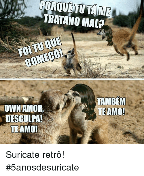 Pt-Br (Brazilian Portuguese), International, and Own: TRATANO MAL?  TAMBEM  TE AMO  OWN AMOR,  DESCULPA  TE AMO! Suricate retrô!  #5anosdesuricate