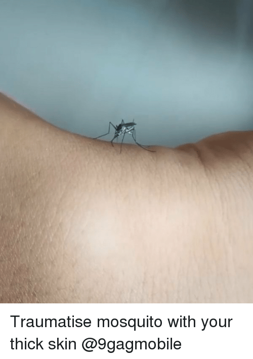 thick skin: Traumatise mosquito with your thick skin @9gagmobile