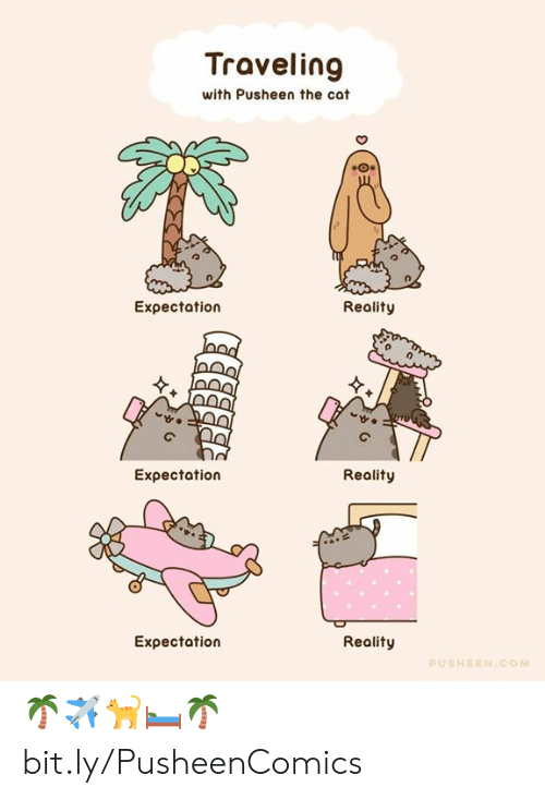 Expectation Reality: Traveling  with Pusheen the cat  Expectation  Reality  Eχpectation  Reality  Expectation  Reality  PUSHEEN.COM 🌴✈️🐈🛏️🌴 bit.ly/PusheenComics