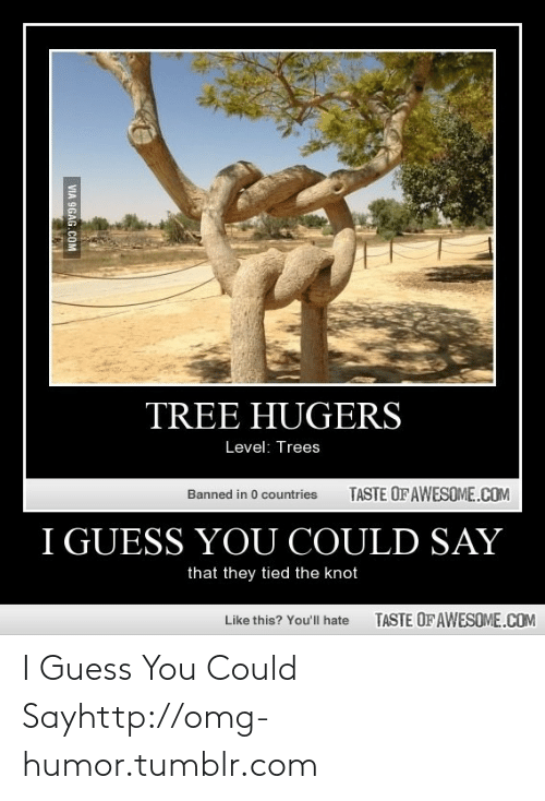 the knot: TREE HUGERS  Level: Trees  TASTE OF AWESOME.COM  Banned in 0 countries  I GUESS YOU COULD SAY  that they tied the knot  TASTE OF AWESOME.COM  Like this? Youll hate  VIA 9GAG.COM I Guess You Could Sayhttp://omg-humor.tumblr.com