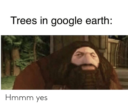 Google Earth: Trees in google earth: Hmmm yes