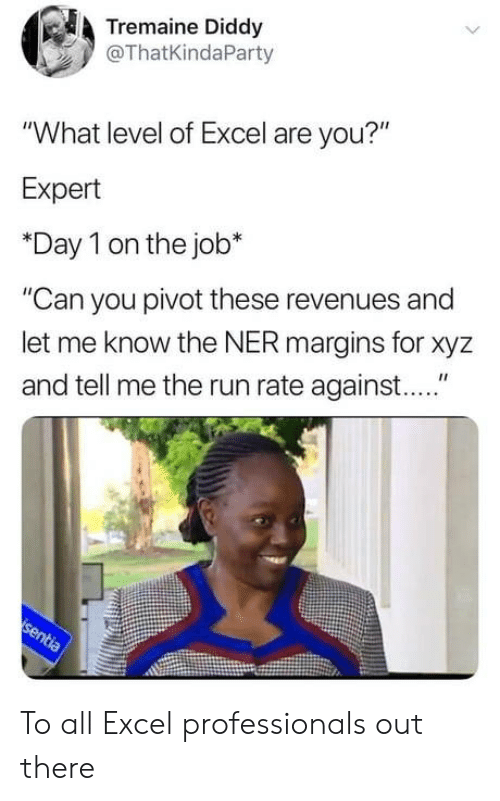 "xyz: Tremaine Diddy  @ThatKindaParty  ""What level of Excel are you?""  Expert  *Day 1 on the job*  ""Can you pivot these revenues and  let me know the NER margins for xyz  and tell me the run rate against...."" To all Excel professionals out there"