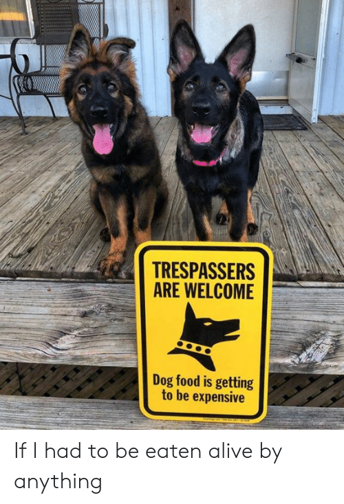 Be Eaten: TRESPASSERS  ARE WELCOME  Dog food is getting  to be expensive If I had to be eaten alive by anything