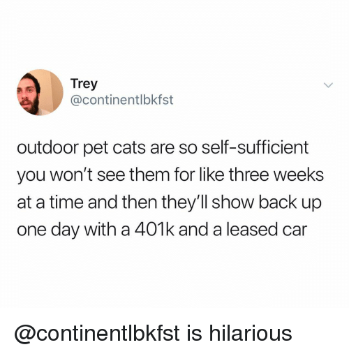 401k: Trey  @continentlbkfst  outdoor pet cats are so self-sufficient  you won't see them for like three weeks  at a time and then they'll show back up  one day with a 401k and a leased car @continentlbkfst is hilarious