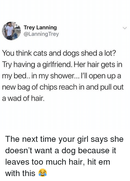 Cats, Dogs, and Hit 'Em: Trey Lanning  @Lanning Trey  You think cats and dogs shed a lot?  Try  having a girlfriend. Her hair gets in  my bed.. in my shower... I'll open up a  new bag of chips reach in and pull out  a wad of hair. The next time your girl says she doesn't want a dog because it leaves too much hair, hit em with this 😂