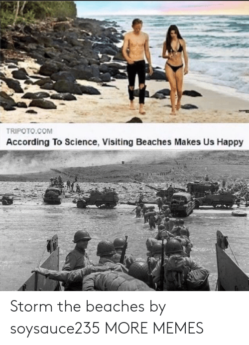 beaches: TRIPOTO.COM  According To Science, Visiting Beaches Makes Us Happy Storm the beaches by soysauce235 MORE MEMES