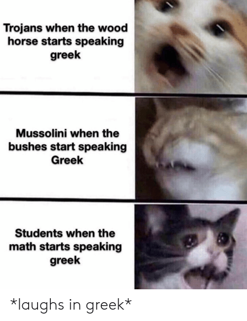 Horse, Math, and Greek: Trojans when the wood  horse starts speaking  greek  Mussolini when the  bushes start speaking  Greek  Students when the  math starts speaking  greek *laughs in greek*