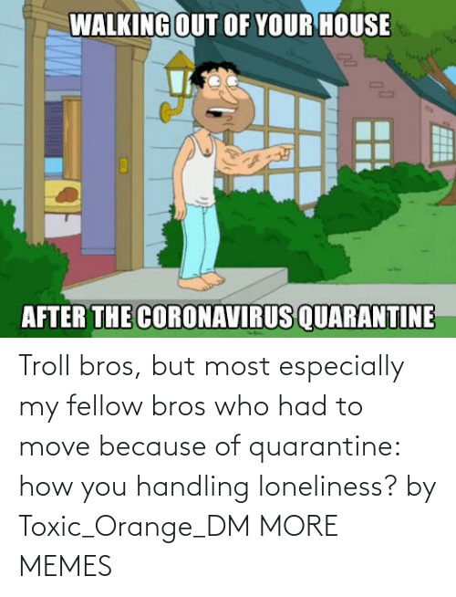 Especially: Troll bros, but most especially my fellow bros who had to move because of quarantine: how you handling loneliness? by Toxic_Orange_DM MORE MEMES