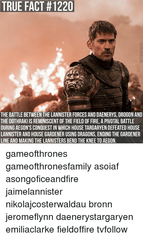 house targaryen: TRUE FACT #1220  THE BATTLE BETWEEN THE LANNISTER FORCES AND DAENERYS, DROGON AND  THE DOTHRAKI IS REMINISCENT OF THE FIELD OF FIRE, A PIVOTAL BATTLE  DURING AEGON'S CONQUEST IN WHICH HOUSE TARGARYEN DEFEATED HOUSE  LANNISTER AND HOUSE GARDENER USING DRAGONS, ENDING THE GARDENER  LINE AND MAKING THE LANNISTERS BEND THE KNEE TO AEGON. gameofthrones gameofthronesfamily asoiaf asongoficeandfire jaimelannister nikolajcosterwaldau bronn jeromeflynn daenerystargaryen emiliaclarke fieldoffire tvfollow