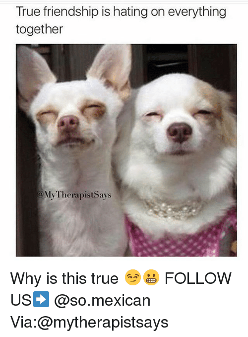 Memes, True, and Mexican: True friendship is hating on everything  together  MyTherapistSays Why is this true 😏😬 FOLLOW US➡️ @so.mexican Via:@mytherapistsays
