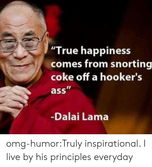 "Ass, Omg, and True: ""True happiness  comes from snorting  coke off a hooker's  ass  Dalai Lama omg-humor:Truly inspirational. I live by his principles everyday"