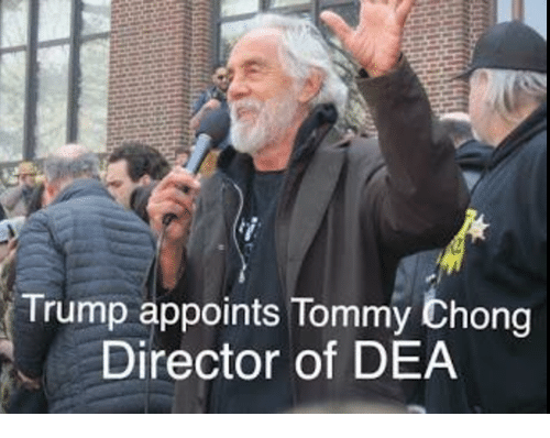 Tommy Chong: Trump appoints Tommy Chong  Director of DEA